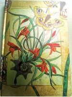 Книга на Сенките модел Green Witch